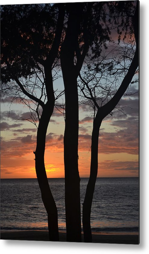 Maui Metal Print featuring the photograph Three Trees At Sunset by Evan Silver