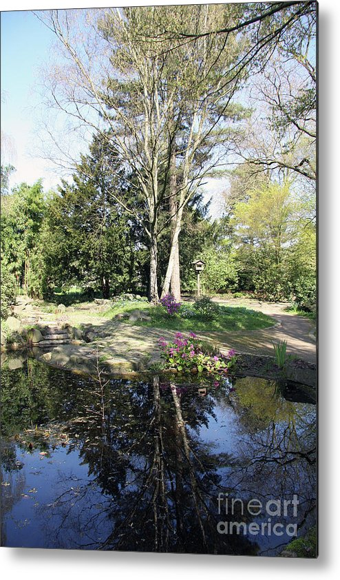 Trees Metal Print featuring the photograph Trees Reflection In The Pond by Christiane Schulze Art And Photography