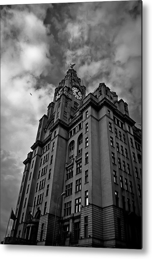 Liverpool Metal Print featuring the photograph Two Birds One City by Drew Millington