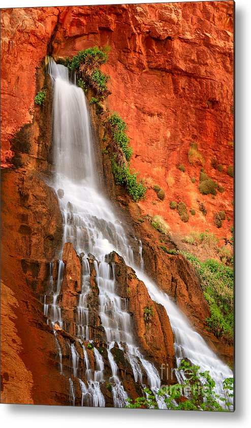 America Metal Print featuring the photograph Vaseys Paradise by Inge Johnsson