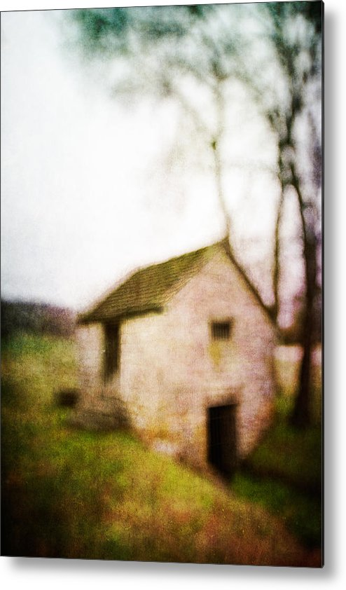 Blur Metal Print featuring the photograph Warner Park Springhouse by David Morel