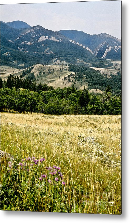 Wilderness Metal Print featuring the photograph Washake Wilderness by Kathy McClure
