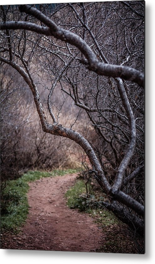 Red Rocks Metal Print featuring the photograph Winding Trail by Karen Saunders