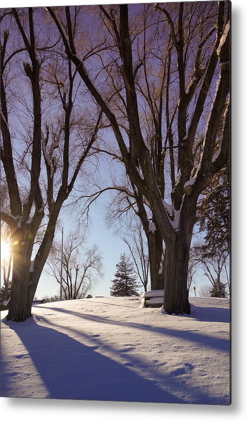 Snow Metal Print featuring the photograph Winter Evening by Gloria Pasko