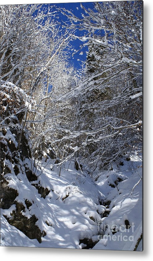 Nature Metal Print featuring the photograph winter in the Bavarian alps 2 by Rudi Prott
