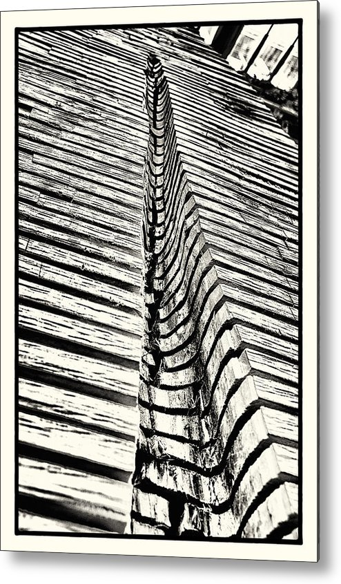 kew Gardens Metal Print featuring the photograph Wooden Sculpture In Palm House Kew Gardens by Lenny Carter