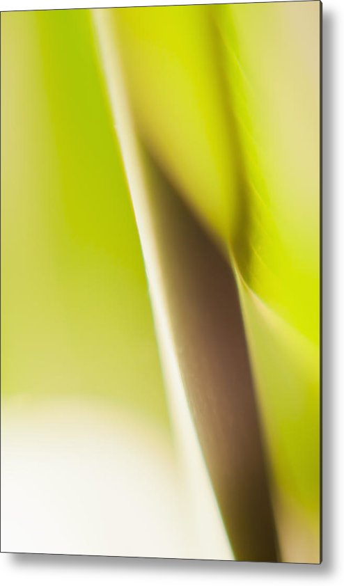 Vertical Metal Print featuring the photograph Abstract Colored Forms And Light by Ralf Hiemisch
