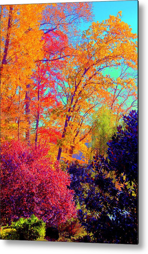 Metal Print featuring the digital art Autumn Colors 13 by Aron Chervin
