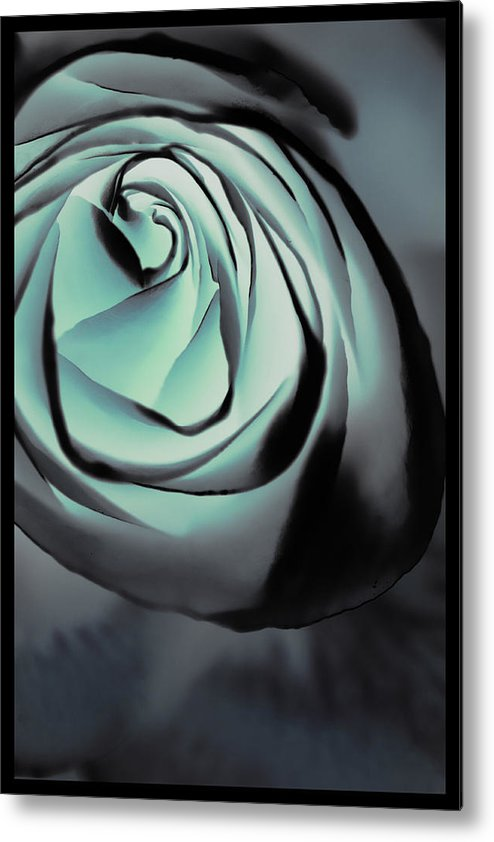 Florals Metal Print featuring the photograph Blue On Blue by Linda Dunn
