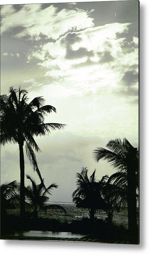 Palm Tree Metal Print featuring the photograph Calmness In The Sunset by Carol Steele