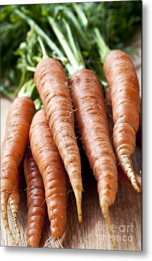 Carrots Metal Print featuring the photograph Carrots by Elena Elisseeva
