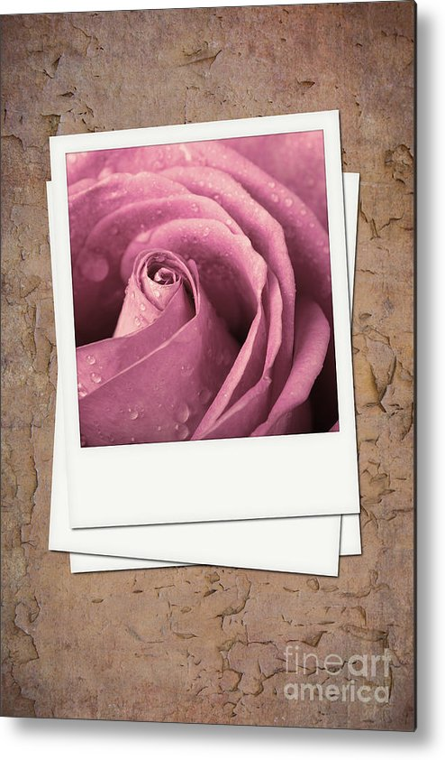 Aged Metal Print featuring the photograph Faded Rose Photo by Jane Rix