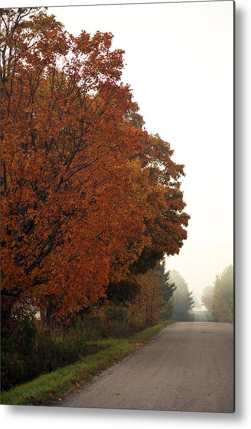 Fall Metal Print featuring the photograph Fall Laneway by Elaine Mikkelstrup