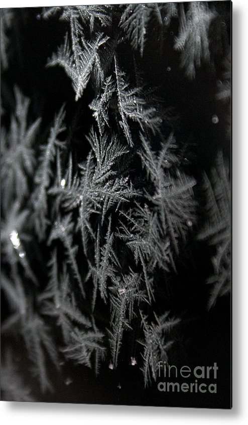 Frost Metal Print featuring the photograph Frost On Glass by Shirleen Mitchell