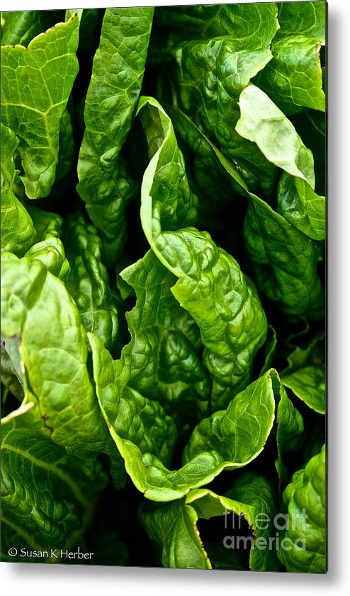 Food Metal Print featuring the photograph Garden Fresh by Susan Herber