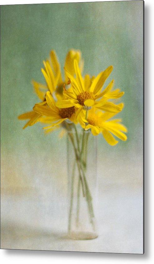 Vertical Metal Print featuring the photograph Golden Daisies by Jill Ferry