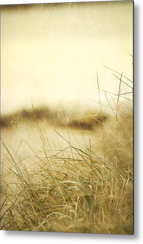 Beach Metal Print featuring the photograph Gray Day At The Beach by Rebecca Cozart