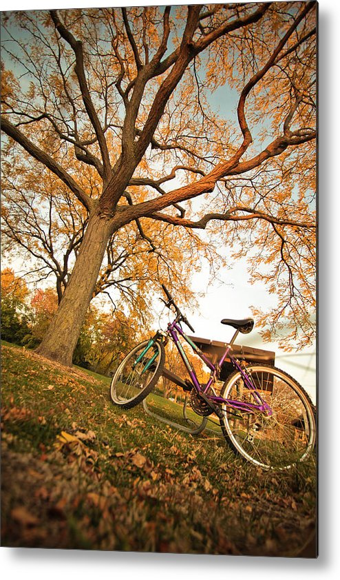 Landscape Metal Print featuring the photograph In Search Of Fall Colors by Subhadip Ghosh