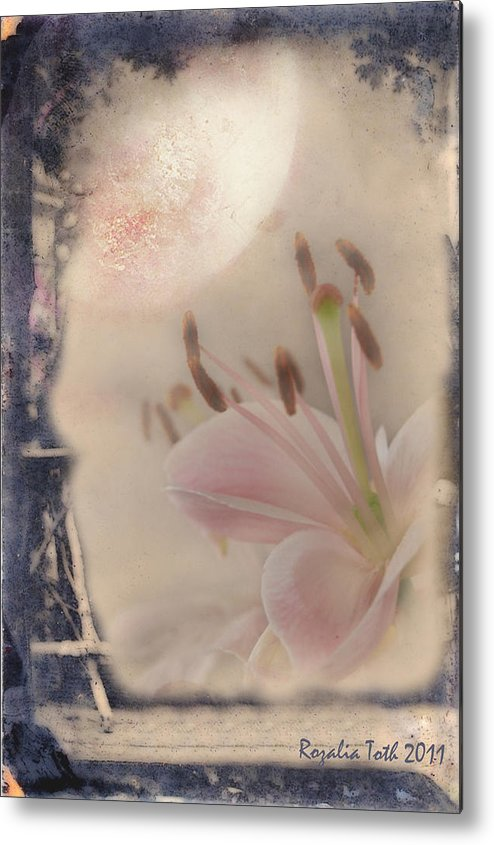 Moon Metal Print featuring the mixed media Lily In The Moonlight by Rozalia Toth