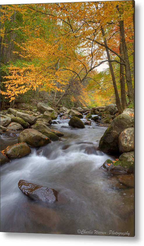 Great Smoky Mountains Metal Print featuring the photograph Mid Stream II by Charles Warren