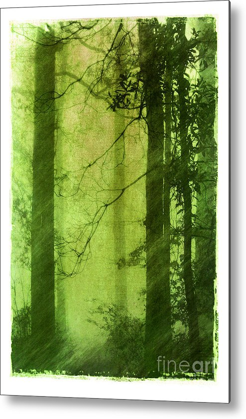 Green Metal Print featuring the photograph Mystical Glade by Judi Bagwell