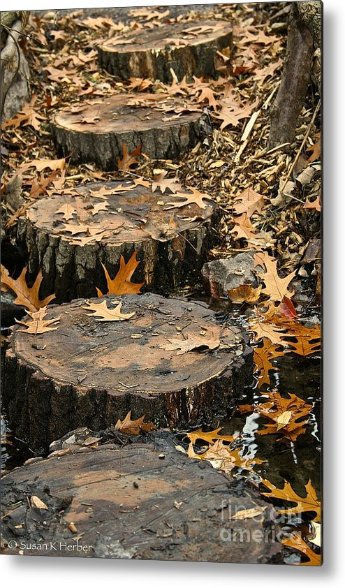 Outdoors Metal Print featuring the photograph Oak Creek Steps by Susan Herber