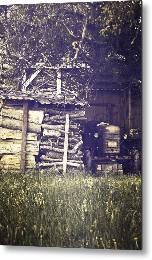 Tree Metal Print featuring the photograph Old Shed by Joana Kruse