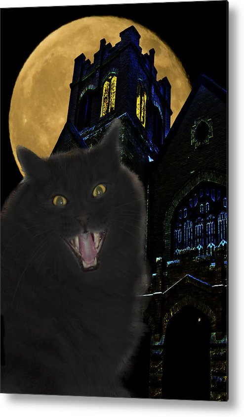 Black Cat Metal Print featuring the photograph One Dark Halloween Night by Shane Bechler