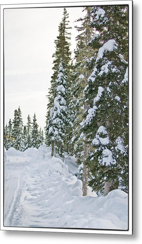 Mountain Metal Print featuring the photograph Powdery Snow Path by Lisa Spencer