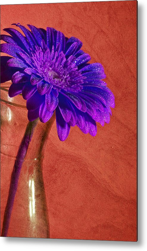 Abstract Metal Print featuring the photograph Purple Flower by Nathan Wright
