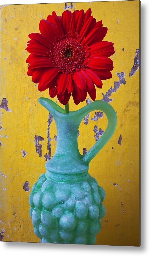 Red Metal Print featuring the photograph Red Daisy In Grape Vase by Garry Gay