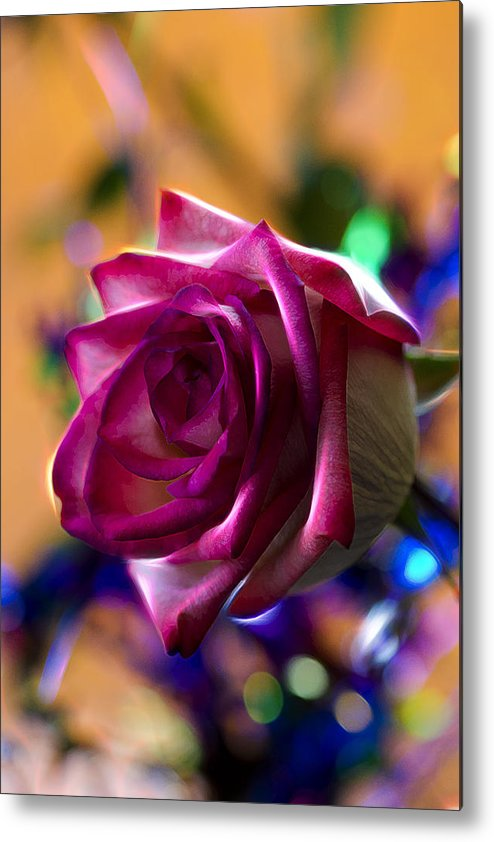 Rose Metal Print featuring the photograph Rose Celebration by Bill Tiepelman
