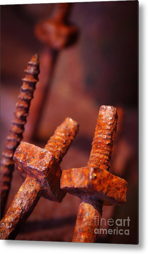 Bolt Metal Print featuring the photograph Rusty Screws by Carlos Caetano