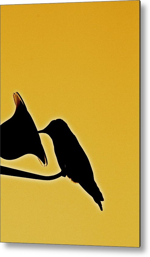 Birds Metal Print featuring the photograph Sepia Silhouette by Diana Hatcher