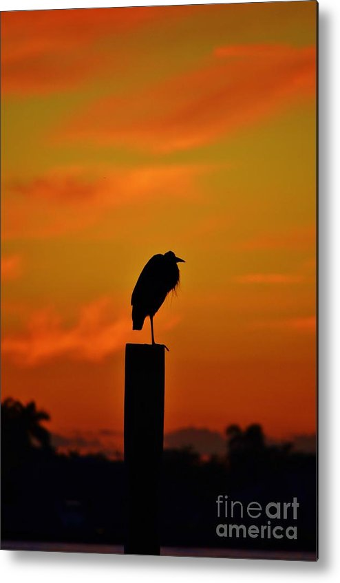 Sunset Metal Print featuring the photograph Sunset Heron by Lynda Dawson-Youngclaus
