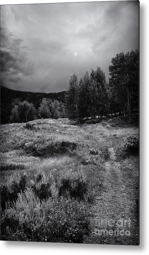 Black And White Landscape Photography Metal Print featuring the photograph The Trail by David Waldrop