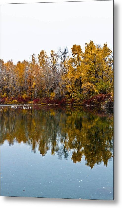 Water Metal Print featuring the photograph Water Reflection by Tamara Hamula