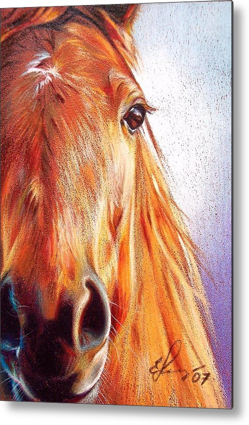 Horse Animal Art Equine Drawing Portrait Metal Print featuring the drawing Chestnut by Elena Kolotusha
