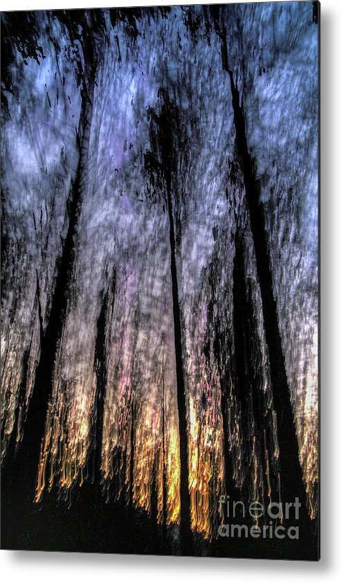 Motion Metal Print featuring the photograph Motion Blurred Trees In A Forest by Vladi Alon