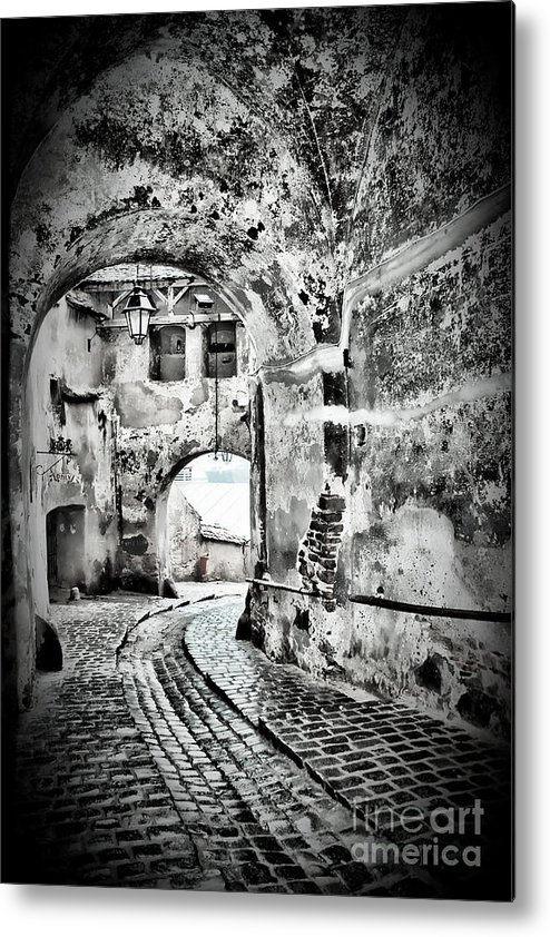 Passage Metal Print featuring the photograph Passage by Gabriela Insuratelu