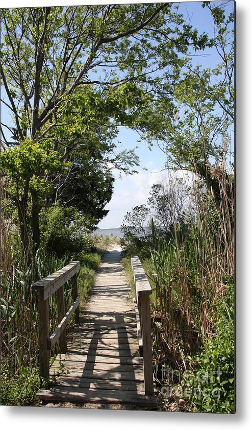 Way Metal Print featuring the photograph Way To The Beach by Christiane Schulze Art And Photography
