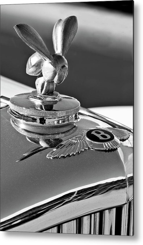 1954 Bentley Metal Print featuring the photograph 1954 Bentley One Of A Kind Hood Ornament 2 by Jill Reger