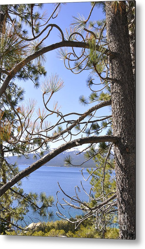 Lake Tahoe Metal Print featuring the photograph Lake Tahoe by LS Photography