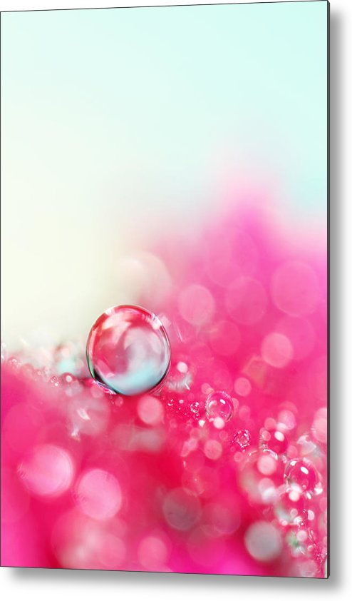 Macro Metal Print featuring the photograph A Drop With Raspberrys And Cream by Sharon Johnstone
