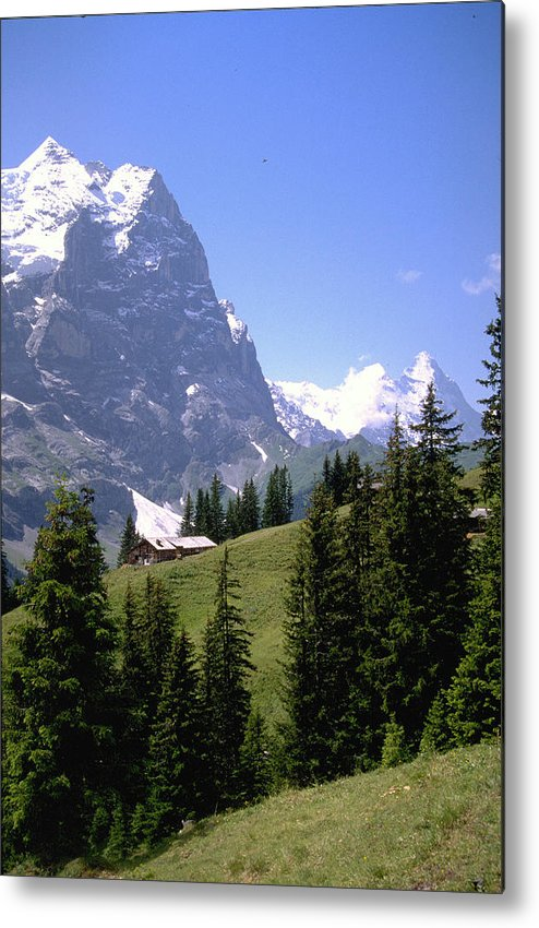 Alps Metal Print featuring the photograph Alps by Flavia Westerwelle