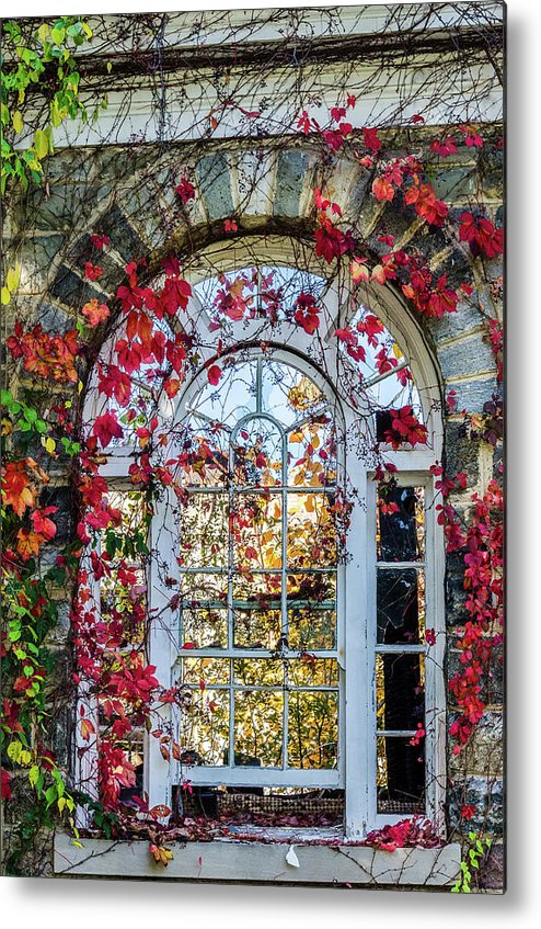 Arch Metal Print featuring the photograph Arch And Red Vines by Chris Augliera