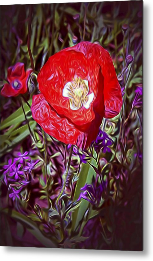 Flowers Metal Print featuring the photograph Artistic Kentucky Red Poppy by Linda Phelps
