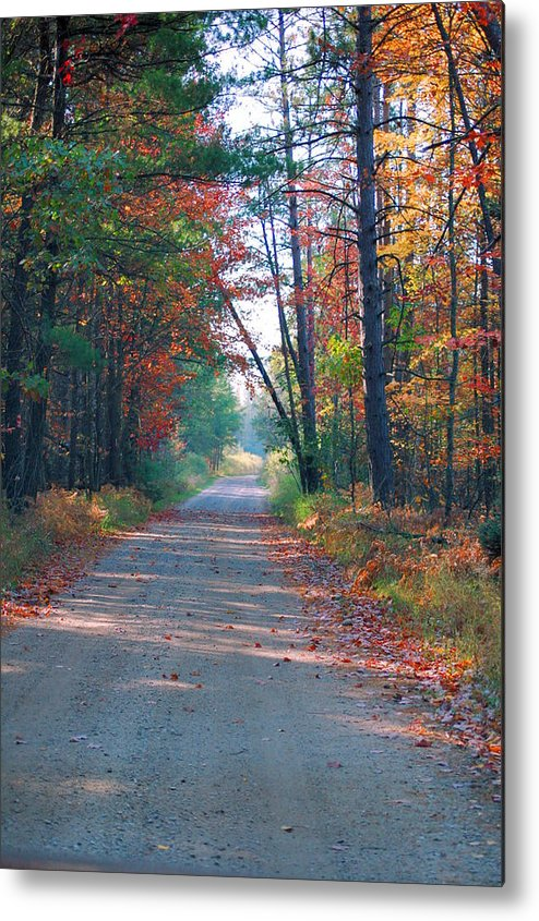 Autumn Metal Print featuring the photograph Autumn Road by Jennifer Englehardt