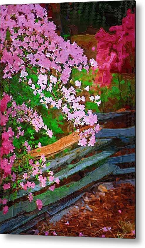 Flowers Metal Print featuring the photograph Azaleas Over The Fence by Donna Bentley