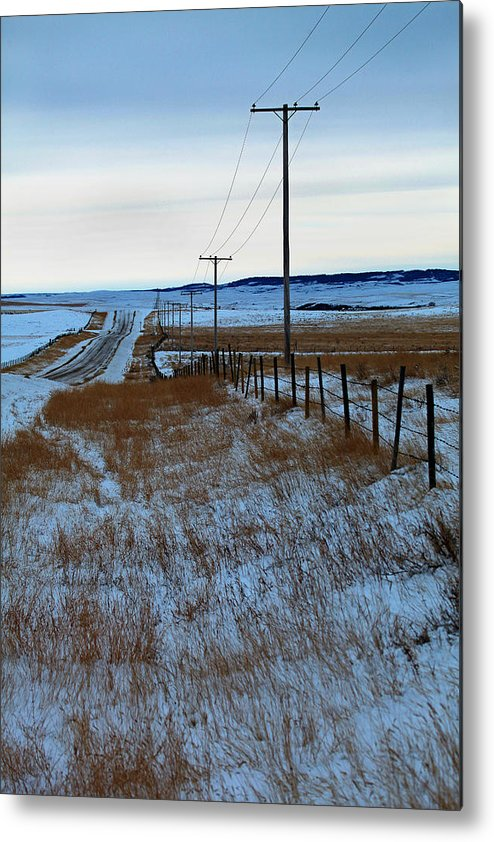 Metal Print featuring the photograph Back Road by Darcy Dietrich
